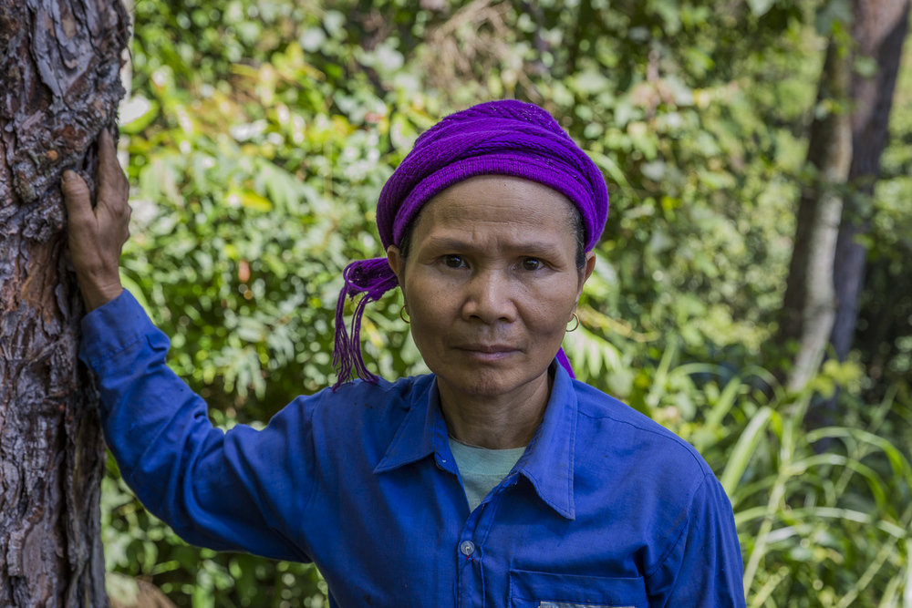 Coffee plantation worker.