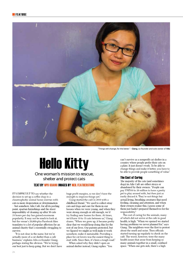 Cat Shelter.jpg