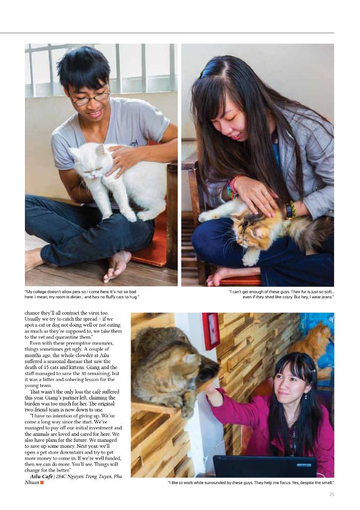 Cat Shelter 2.jpg