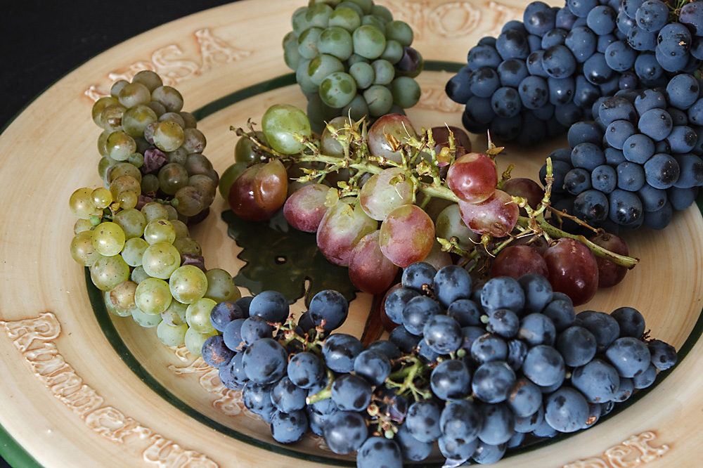 Feast-of-the-grape-2014-1018