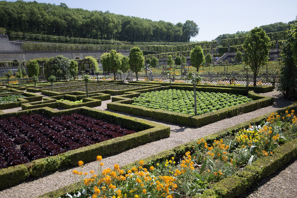 The vegetable garden of the chateau