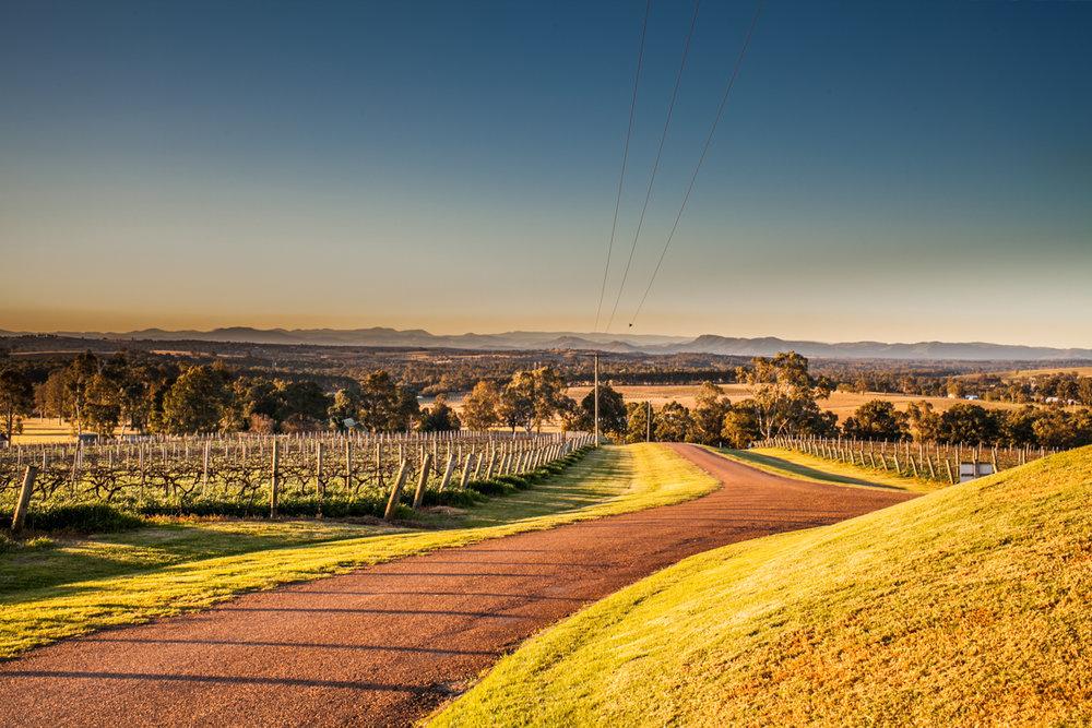 Scarborough Wines Estate