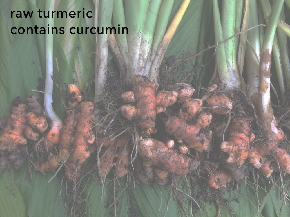raw turmeric contains curcumin