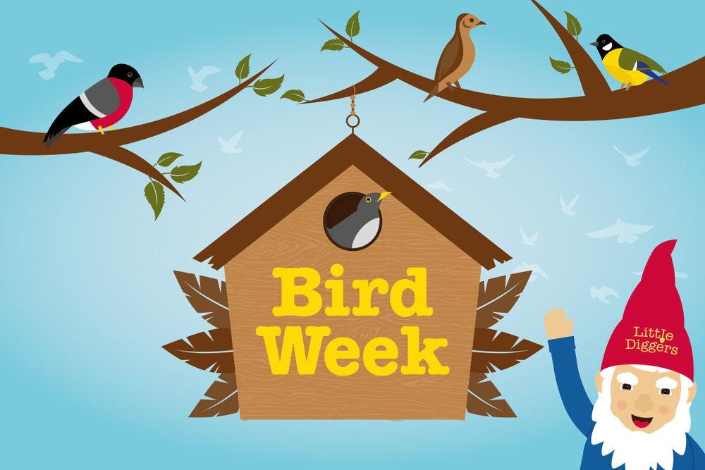 Bird_Week.jpg