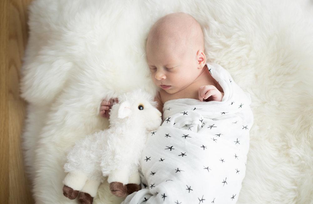 Newborn-9051.jpg