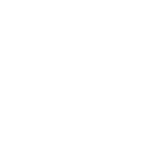 daylymotion.png