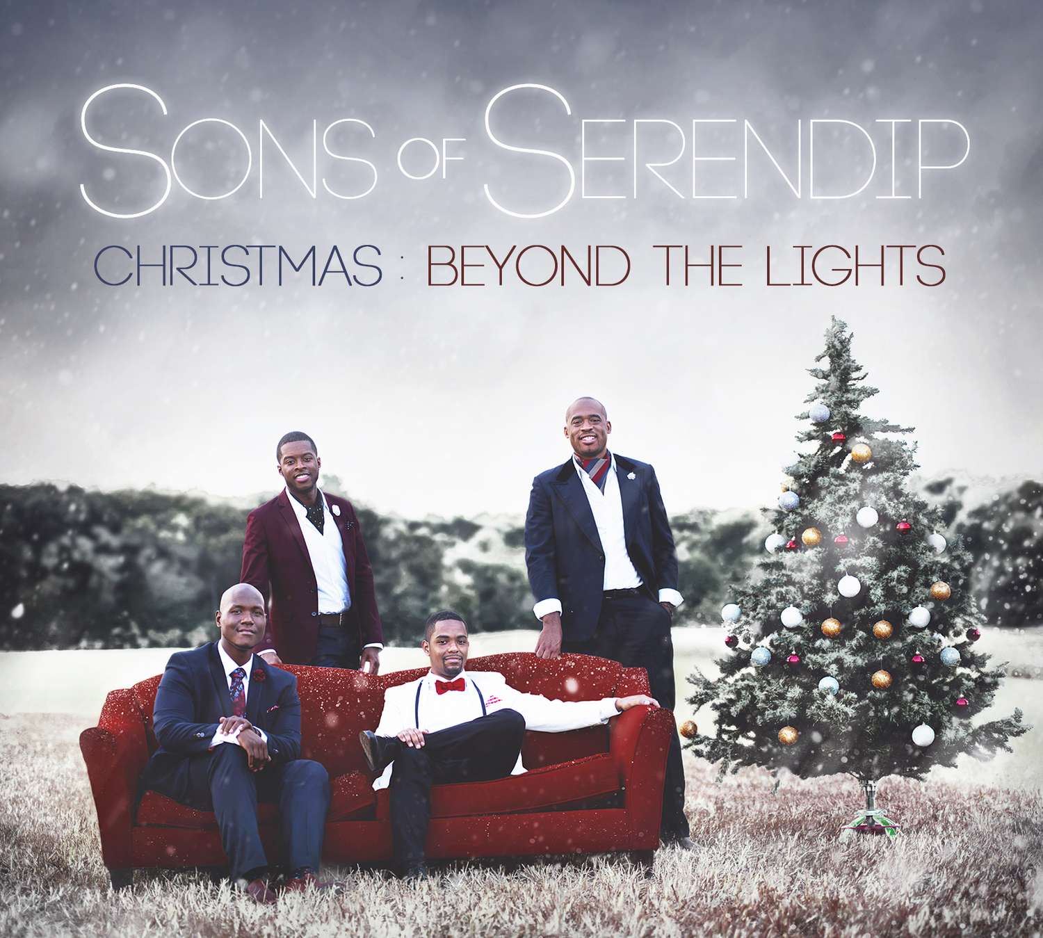 Image result for sons of serendip christmas beyond the lights
