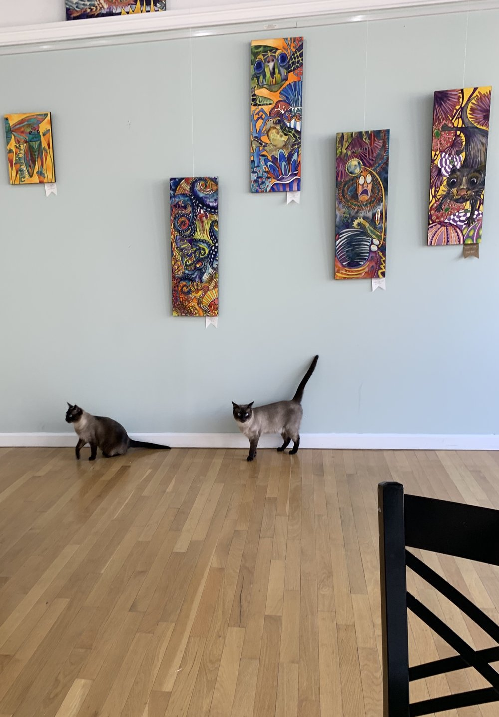 Zeus and Athena, Gallery Guides