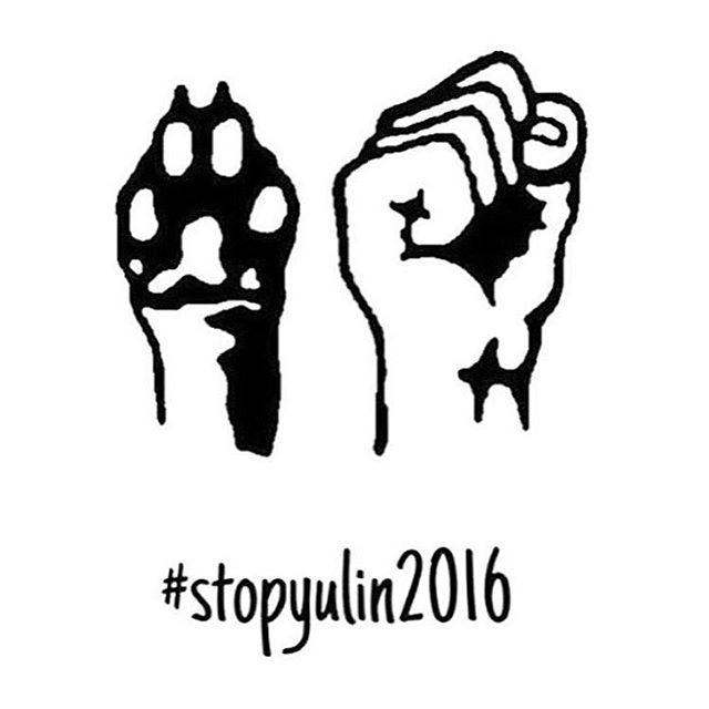 ☝🏻️#stopthemadness ✊🏻 #stopthetorture ✋🏻 #STOP