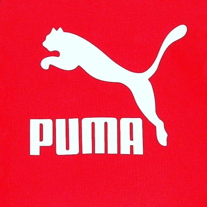 PUMA_Goalking.jpg