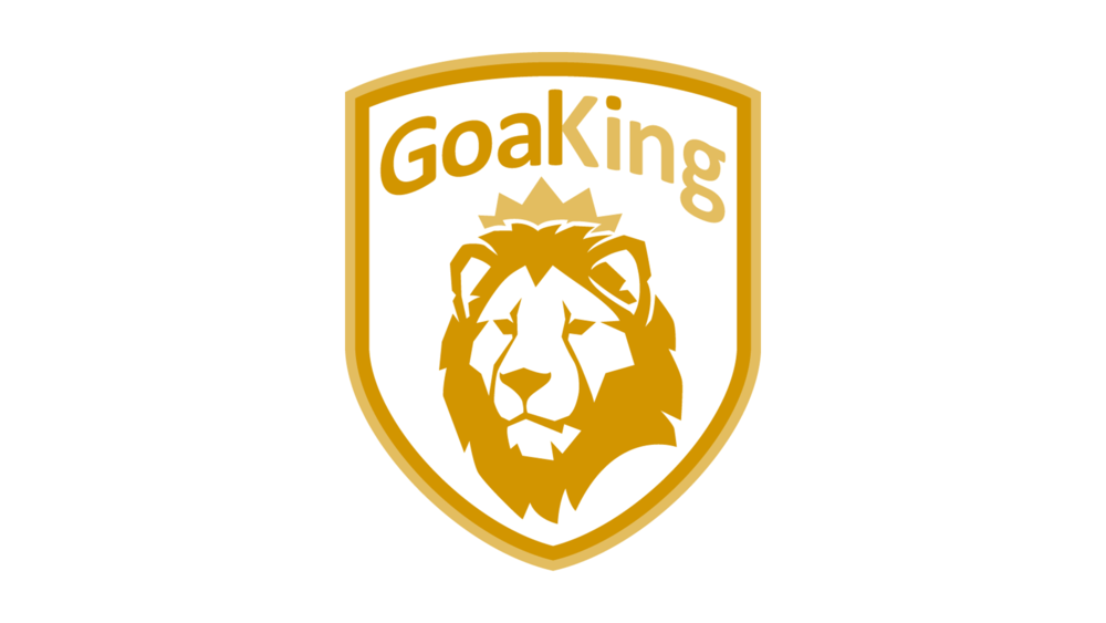 GOALKING High Performance Goalkeeper Technical Training - For advanced youth goalkeepers 14 to 19 years old