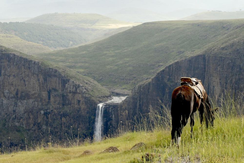 horse waterfall.jpg