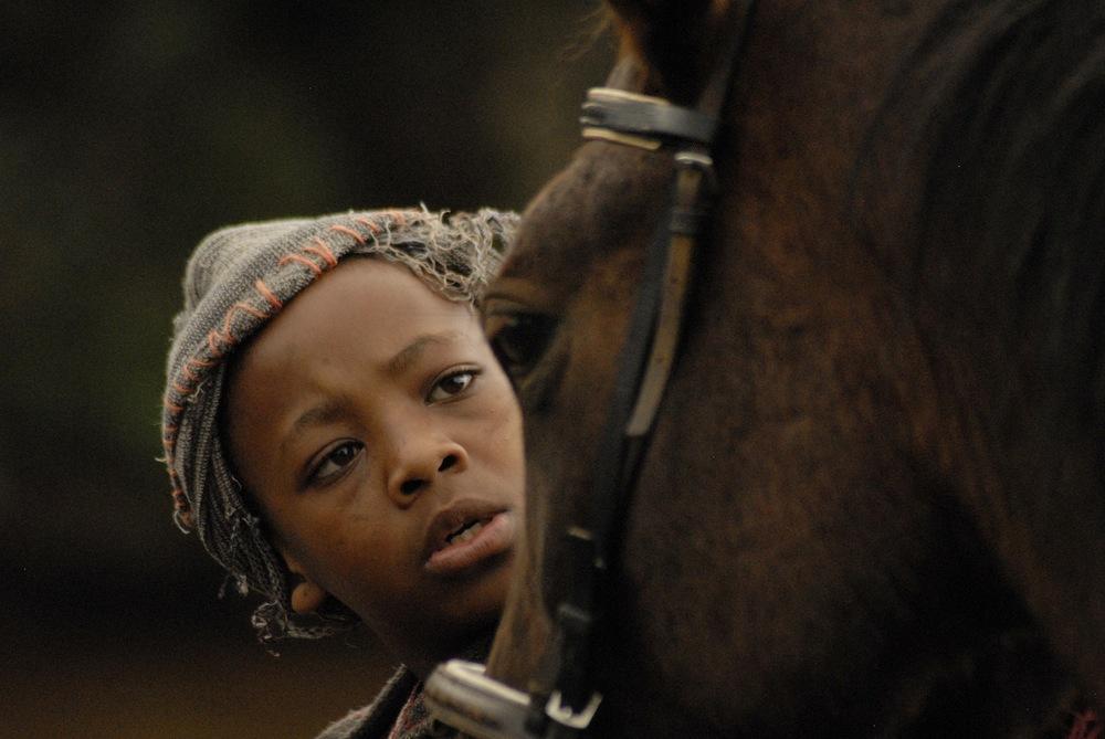 ntsane pets horse.jpg