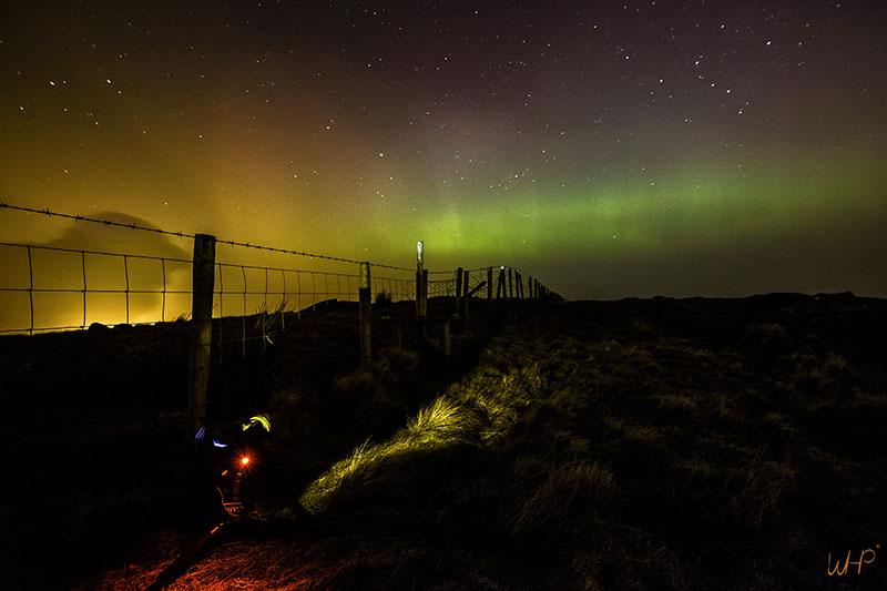 aurora fence sq.jpg