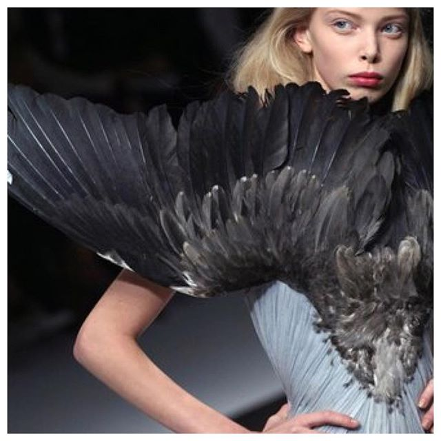 """If I were a bird"". Inspiration images, current mood. #feather #feathers #blue #wings #dress #alexandermcqueen"