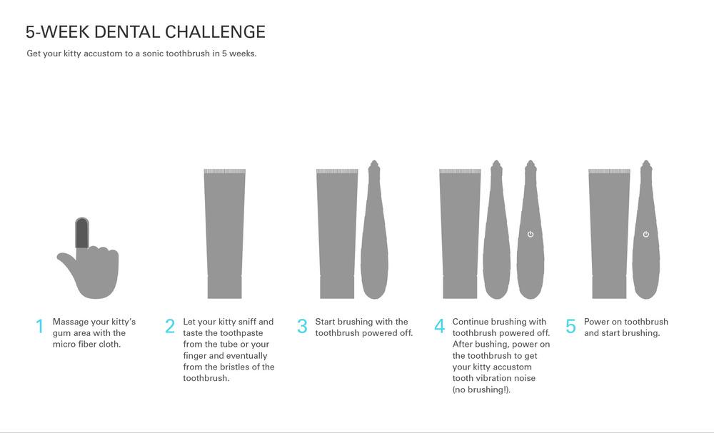 web_toothbrush15.jpg