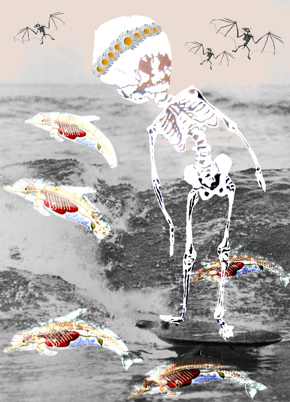 SurfUp3.jpg