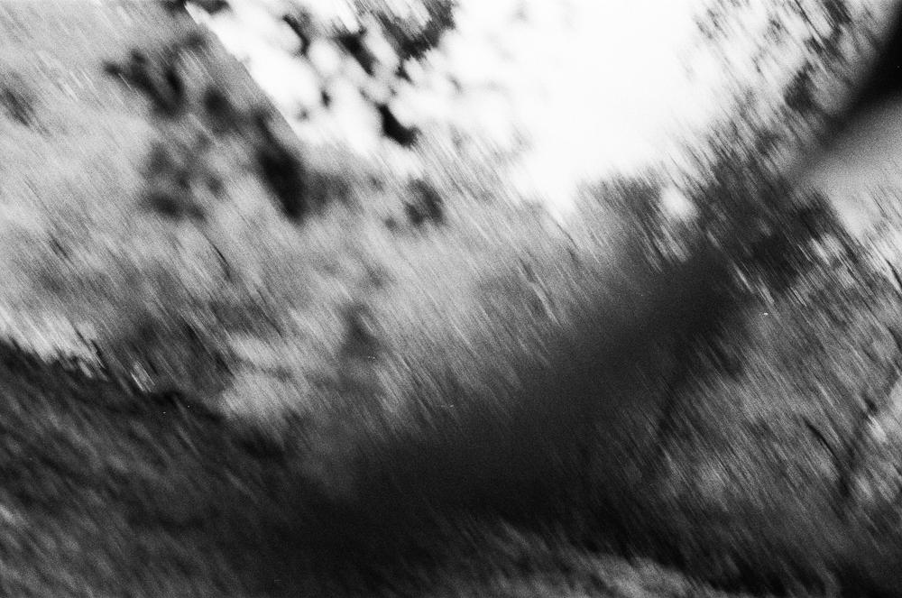 FILM_carlyfoulkes-000012640001.jpg