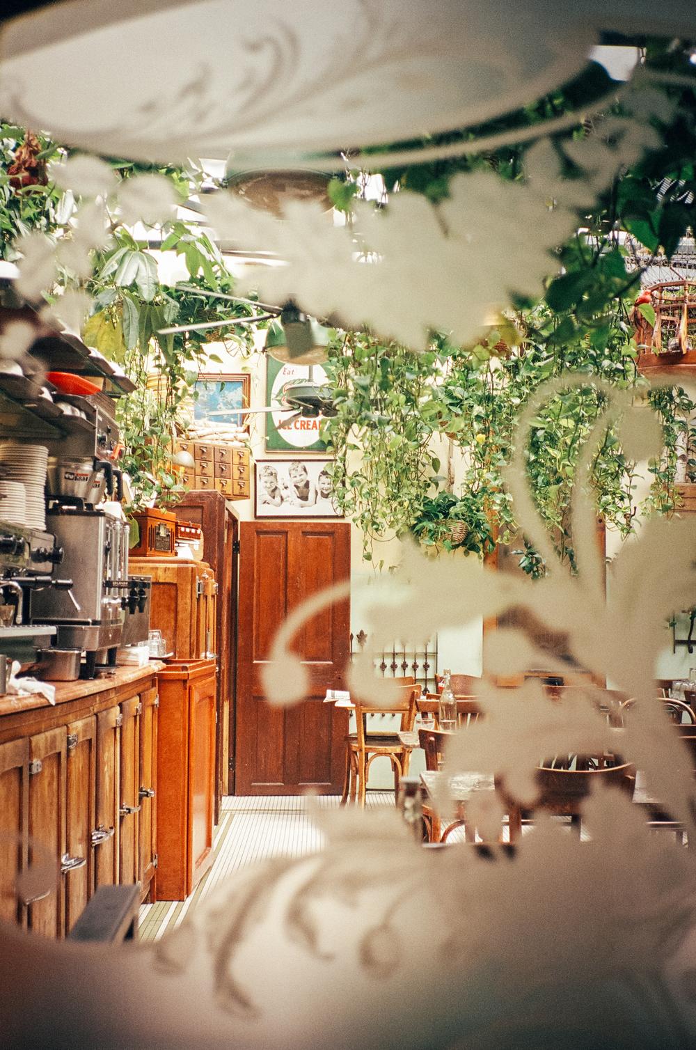 FILM_carlyfoulkes-00300026.jpg