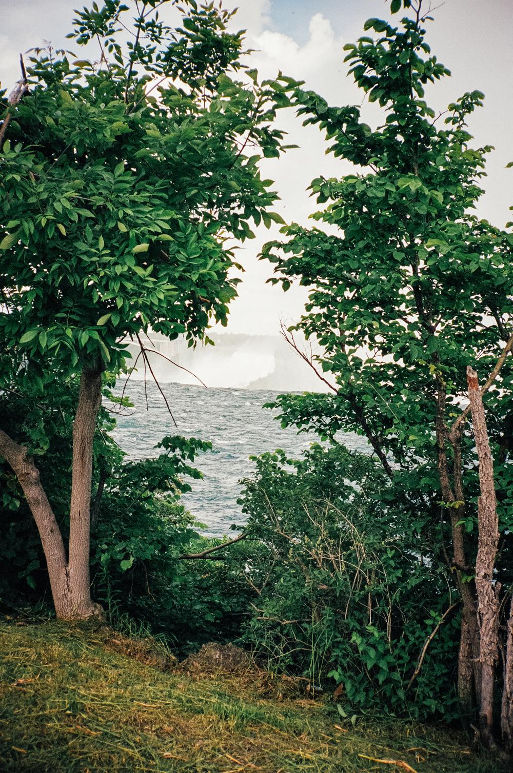 FILM_carlyfoulkes-00300032.jpg