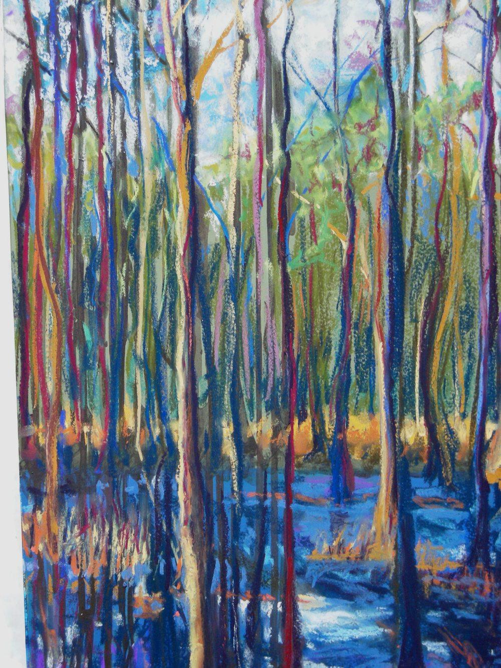 Wetlands- pastel framed under glass 16X28