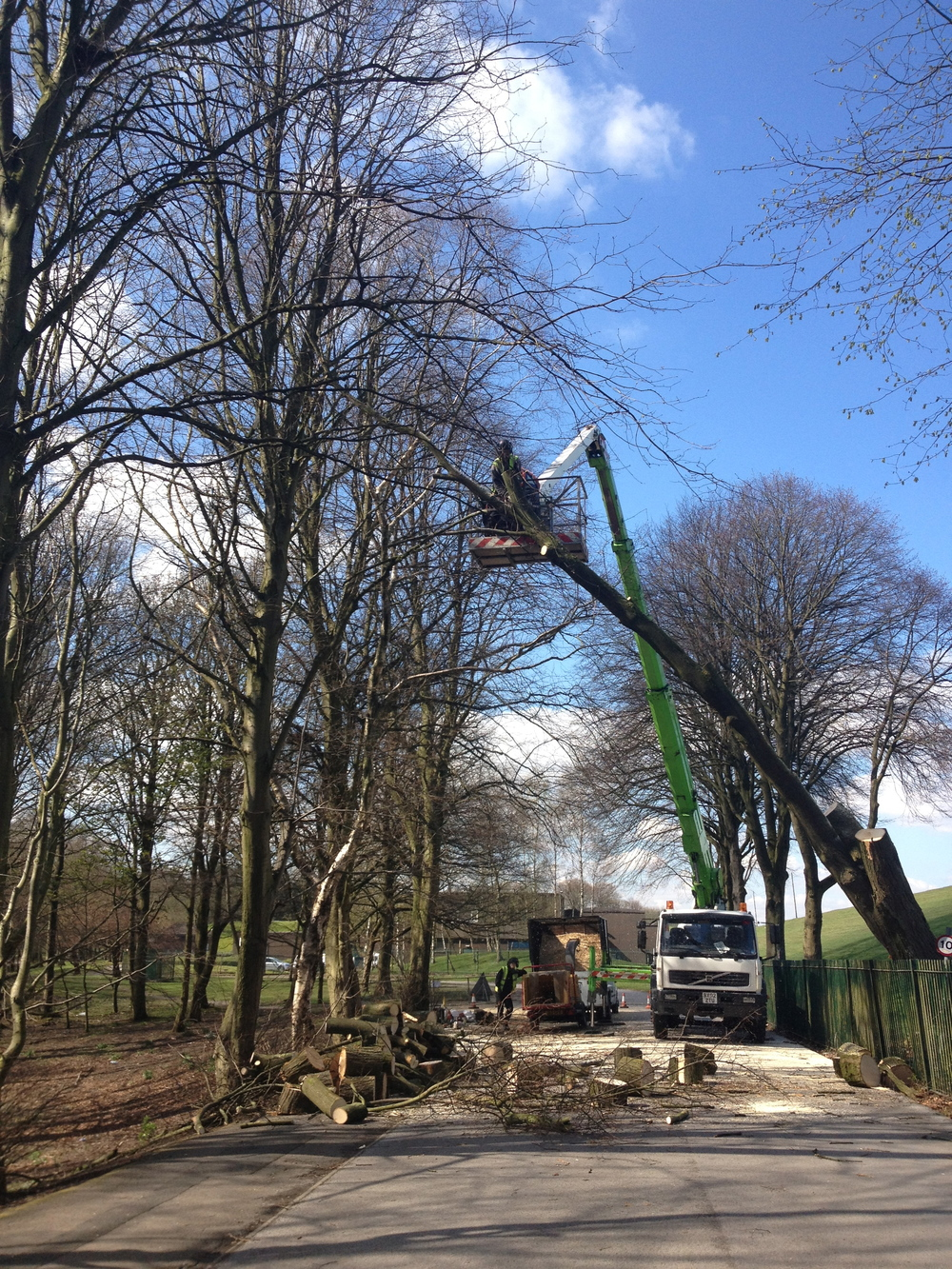 Arbortec Tree Specialists in Bolton