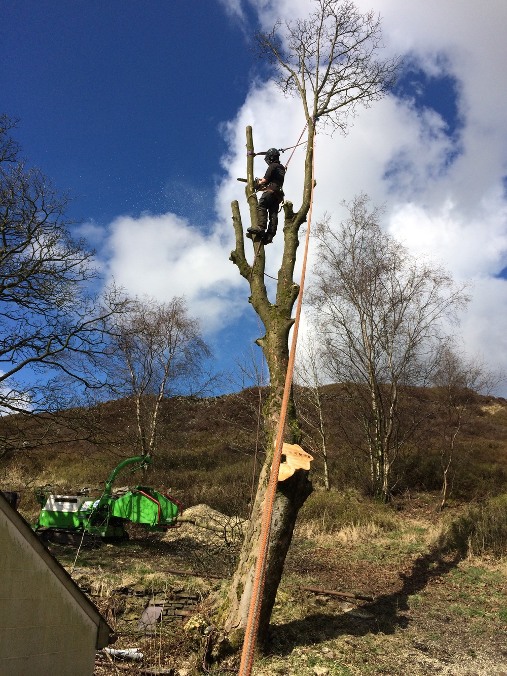 Arbrtec Tree Surgeons in Bolton