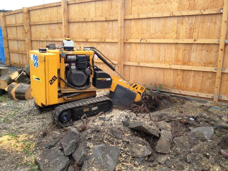 Arbortec Stump Grinding in Bolton