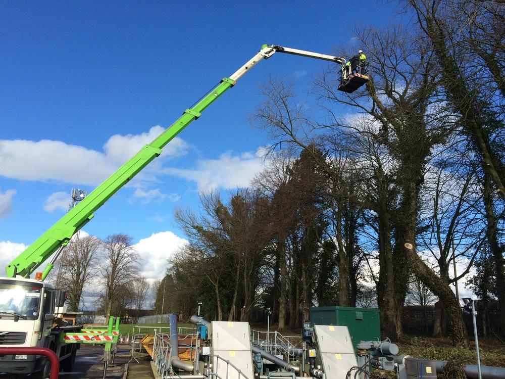 Arbortec Tree Surgeons in Bolton
