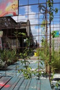 garden 02 (Copy)