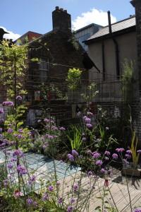 garden 03 (Copy)