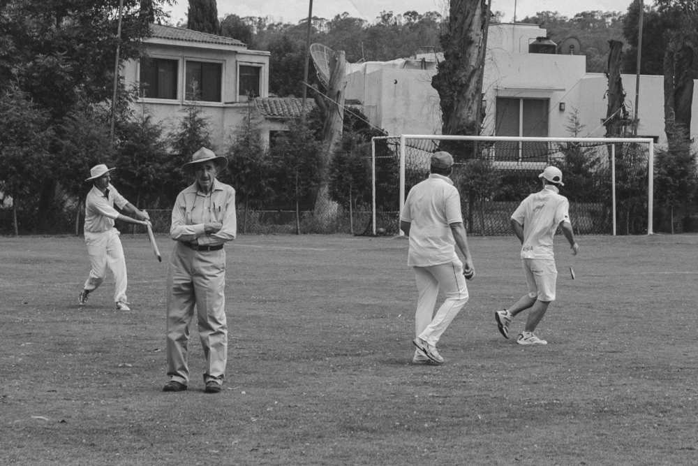 Cricket-14.jpg