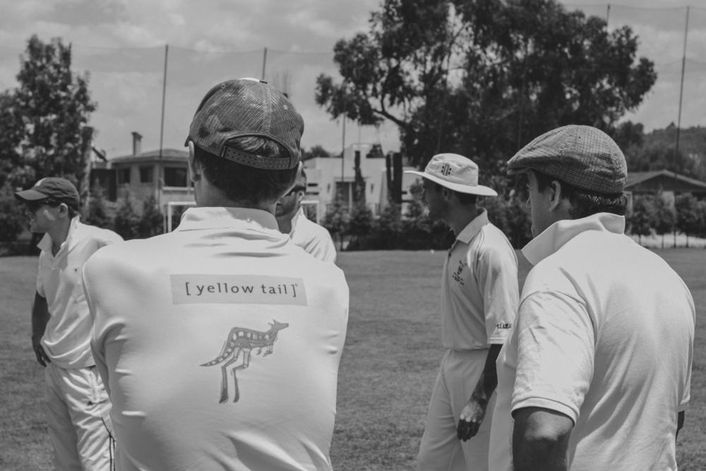 Cricket-17.jpg
