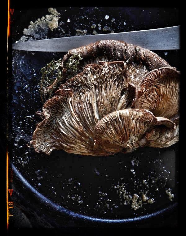 oyster mushroom soup.JPG