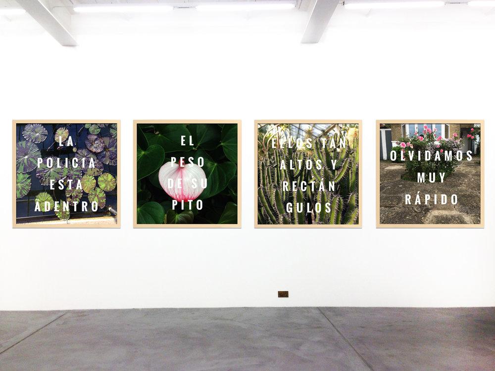instalacion-gallery-gr.jpg