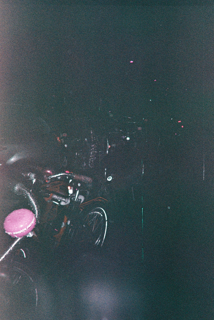 002_lomo-purp.jpg