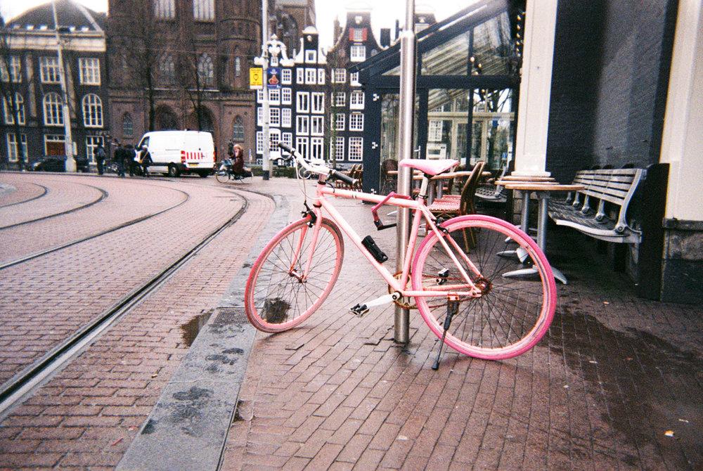 008_pink-new.jpg