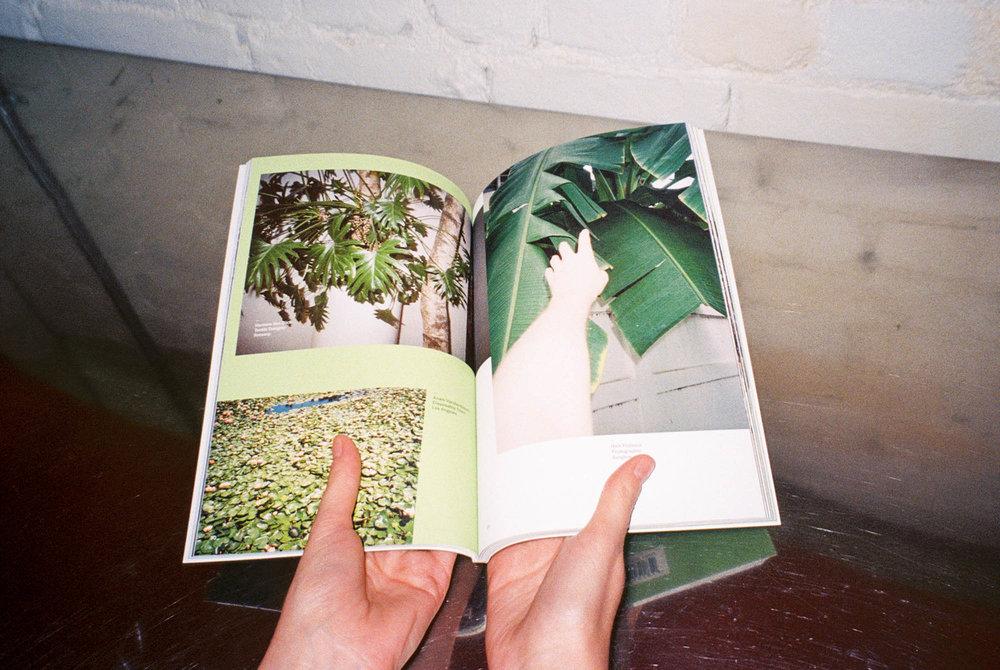 Plants Zine + Free Tote   $20.00