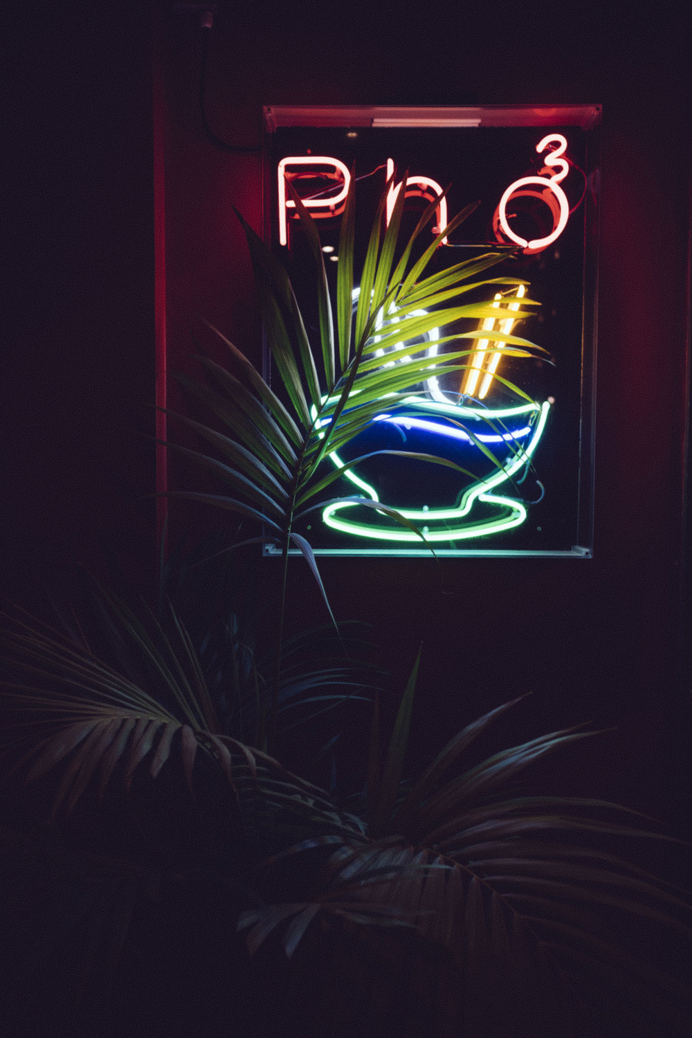 neon pho and some plants