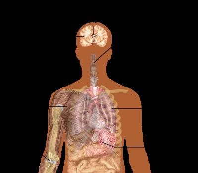 influensa astma