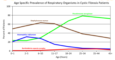 P. aureginosa  (green line) is the most common cause of infection for CF patients older than 18 years old.  By Ninjatacoshell (Own work) [CC BY-SA 3.0 (http://creativecommons.org/licenses/by-sa/3.0) or GFDL (http://www.gnu.org/copyleft/fdl.html)], via Wikimedia Commons