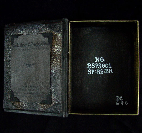 Book Box (Inside)