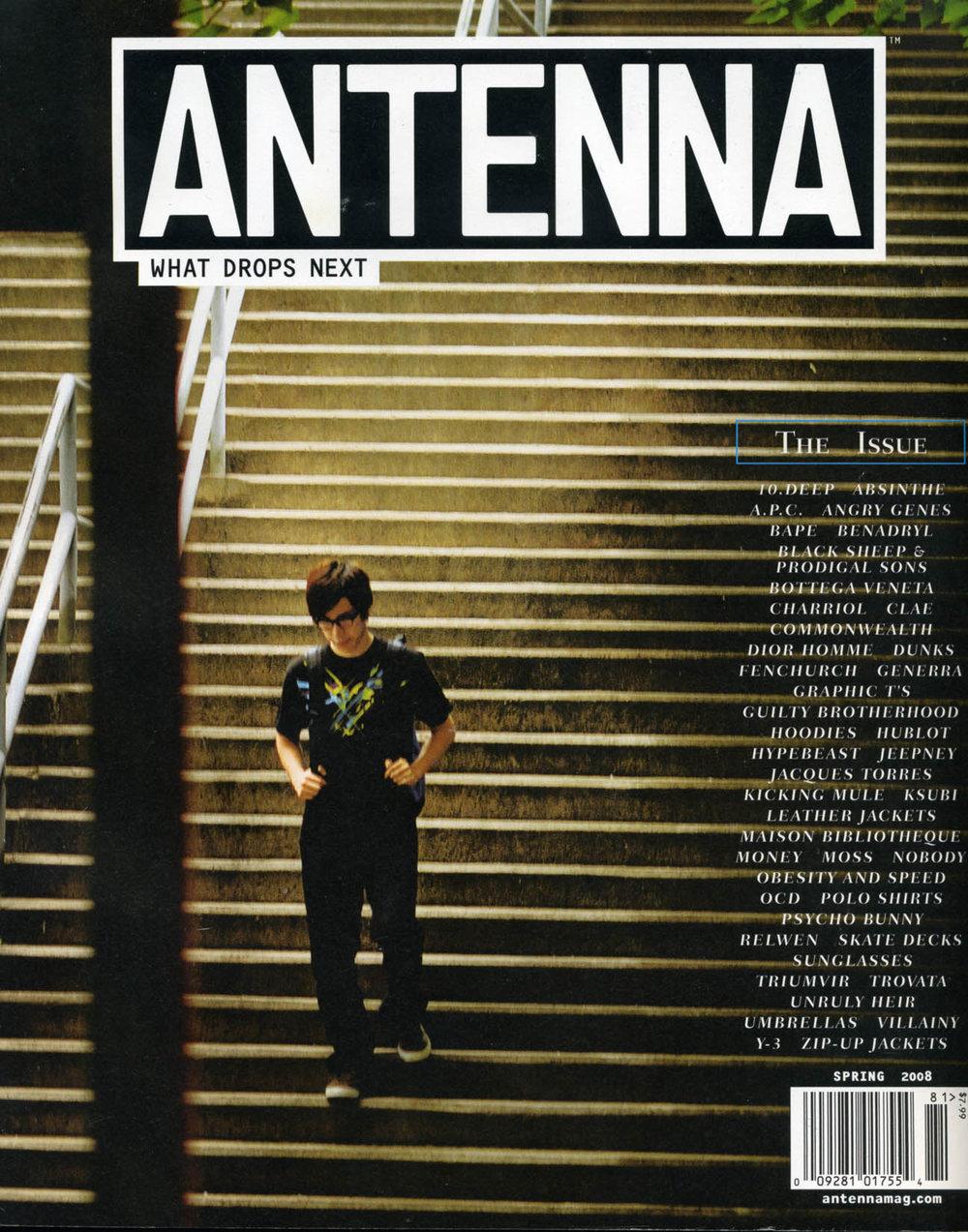 Antenna_Spring2008_1.jpg
