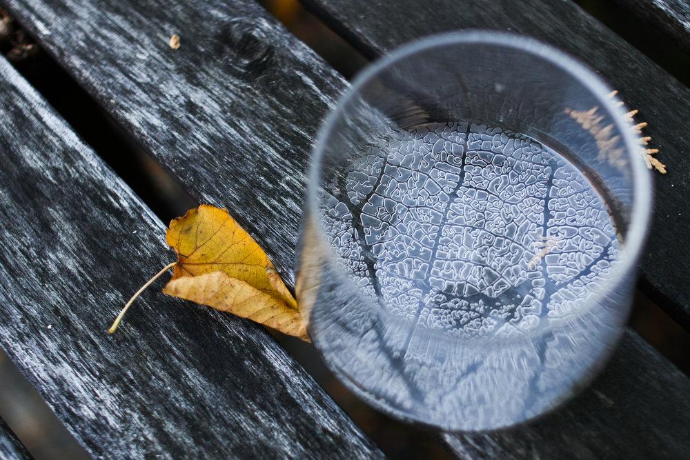 leaf cup (1 of 1)-2.jpg