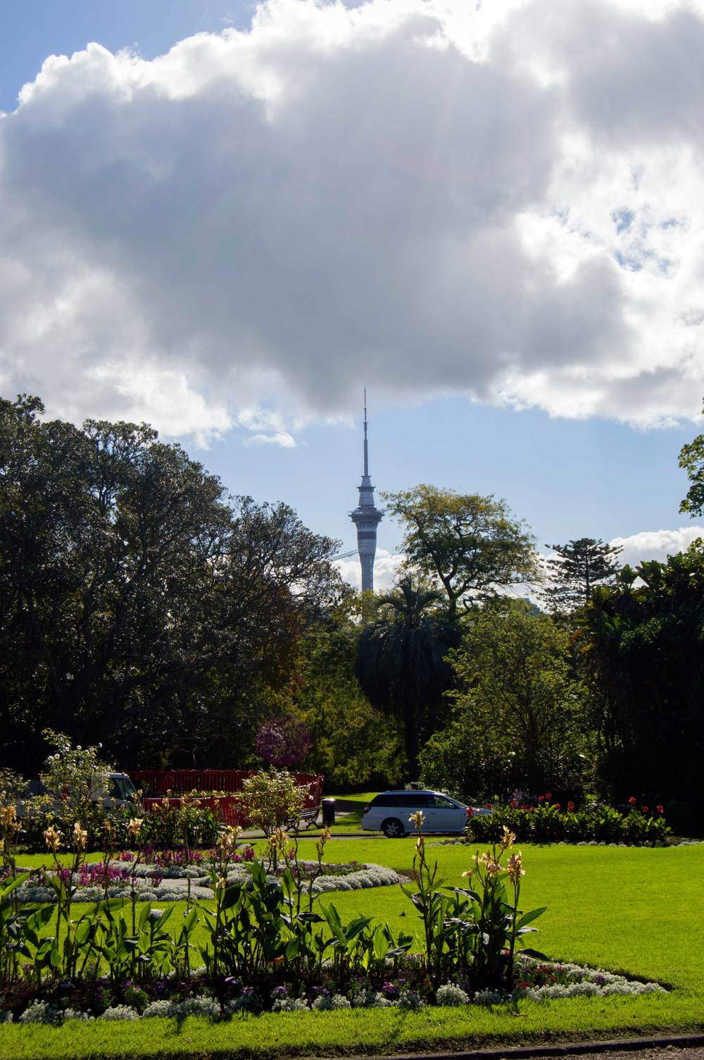 Picture of Auckland Tower from Auckland Domain