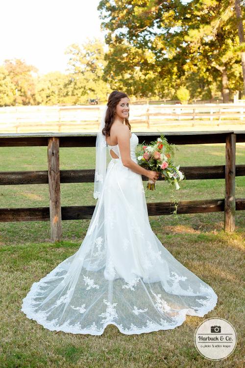 Harbuck+&+Co+-+Wedding+Photography6UNXJQD8.jpg