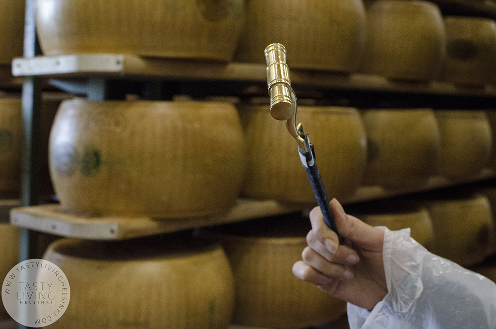 The percussion hammer is used to tap the cheese on various points to test how the maturing is going on.