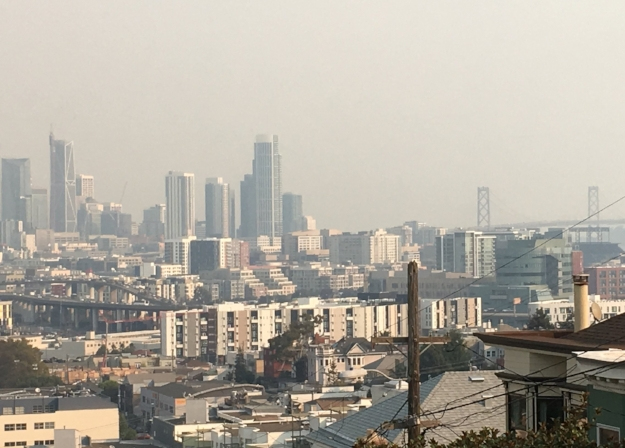 What To Do About Wildfire Smoke Inhalation