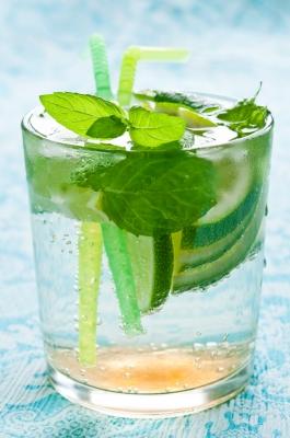 cocktail mojito.jpg