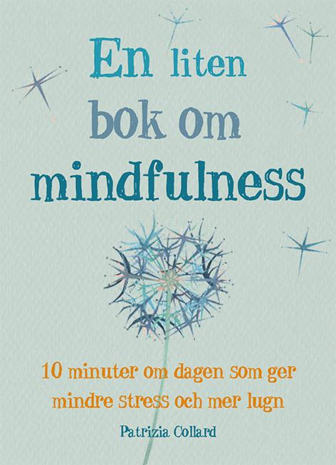 BOK: EN LITEEN BOK OM MINDFULLNESS